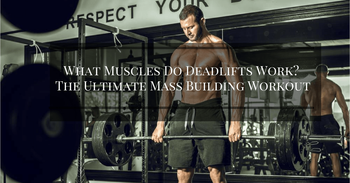 What Muscles Do Deadlifts Work The Ultimate Mass Building Workout