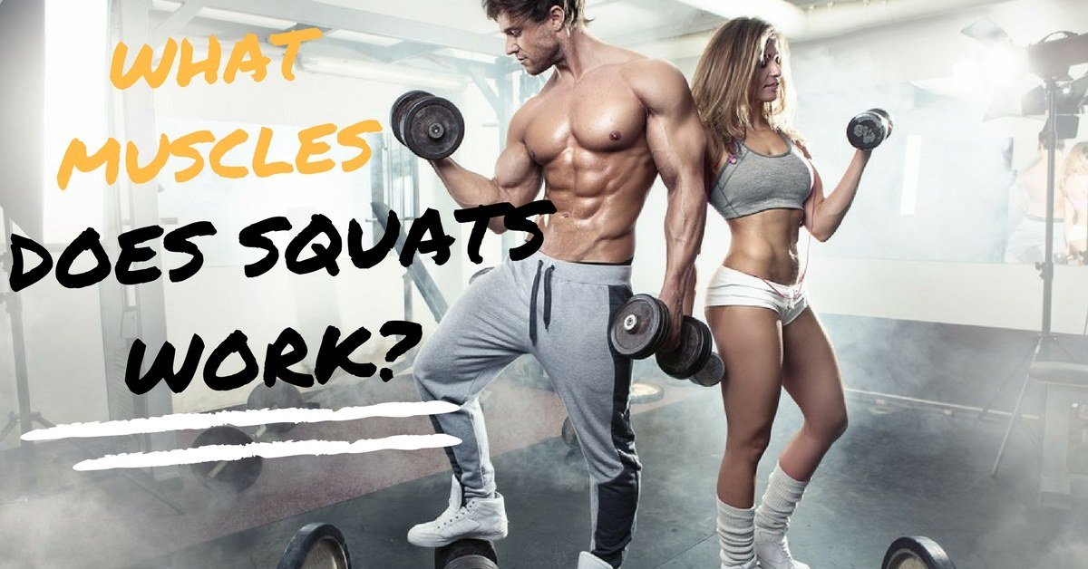 What Muscles Does Squats Work?